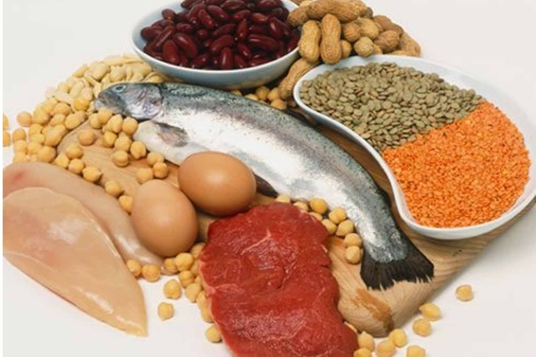 fissac _ dietas altas en proteínas